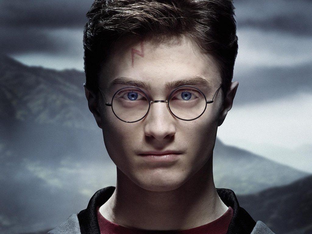 Livro O Destino De Harry Potter Juliana Calderar Eu
